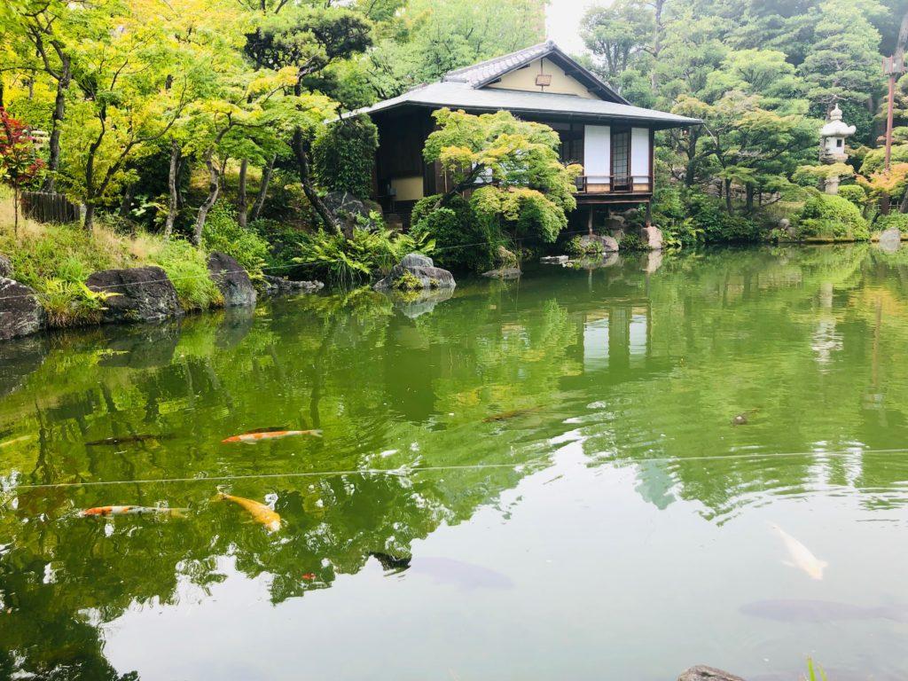 Kimono Tea Ceremony & Zen Garden Tour at Kobe Sorakuen