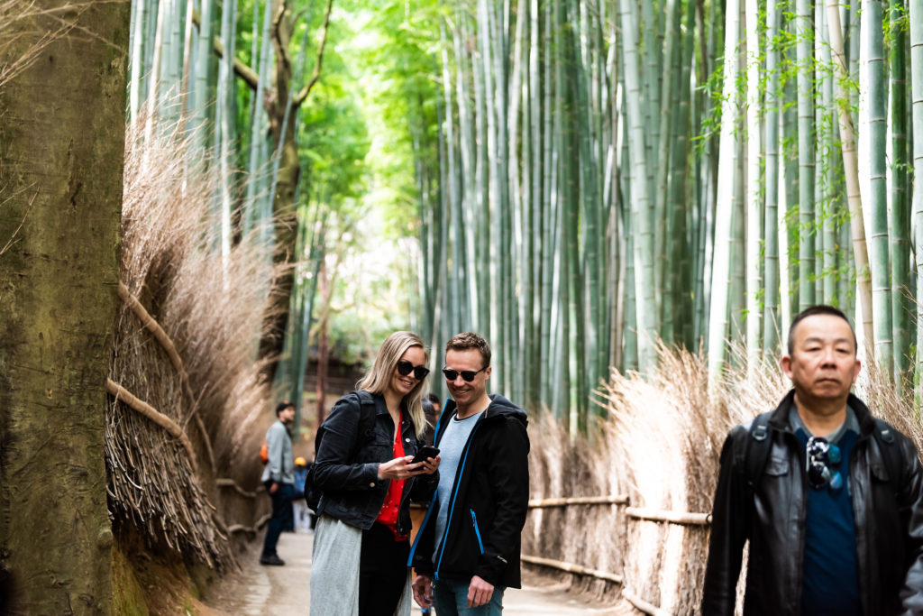 Bamboo Forest walking tour