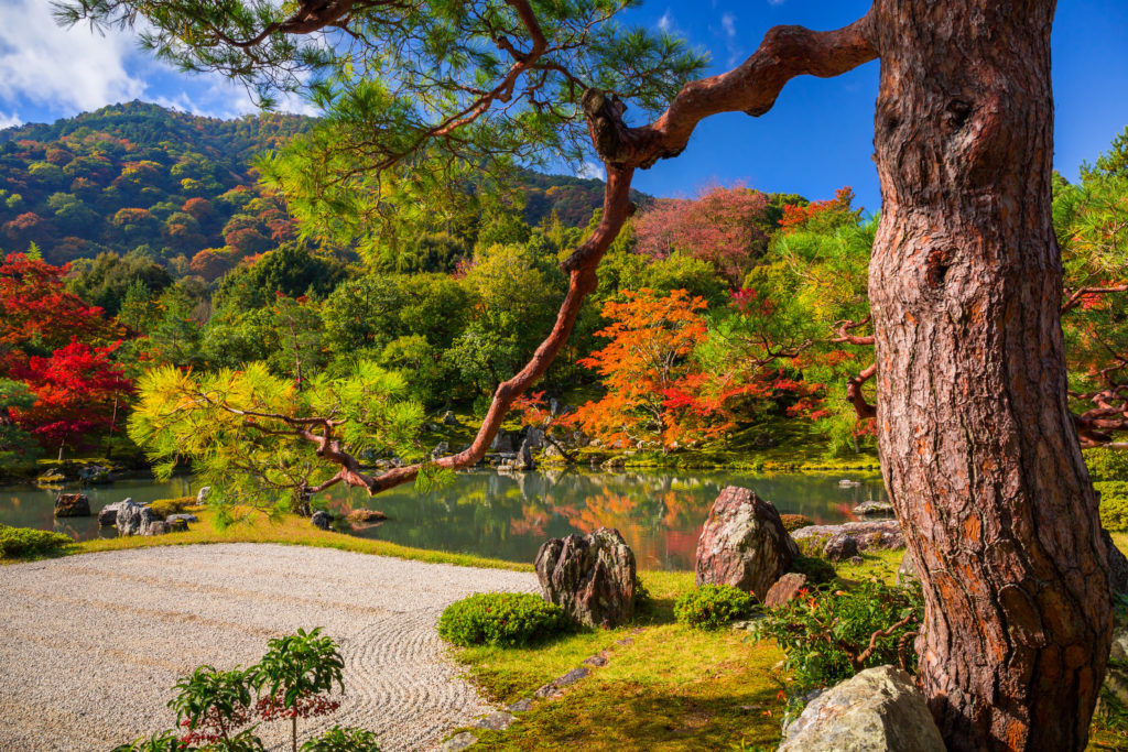 Tenryuji – Temple of the Heavenly Dragon – UNESCO's World Heritage Site walking tour