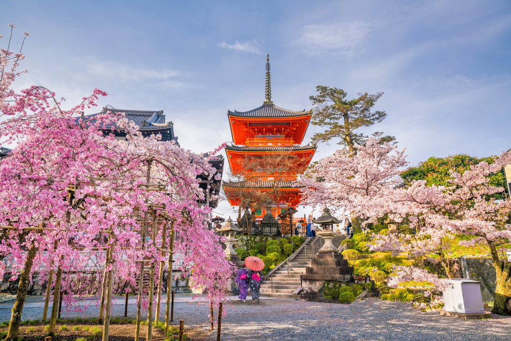 Best Kyoto Experiences, Top 50 MUST DO Activities