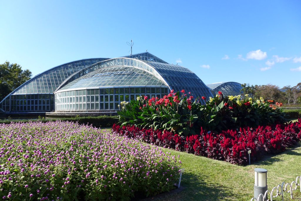 Kyoto Botanical Gardens