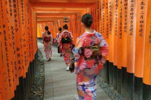 Fushimi Inari Shrine [10000 Gates]